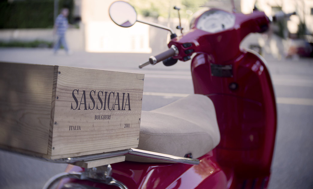 Bolgheri wine tour on luxury vehicle | Wine tasting in Tuscany